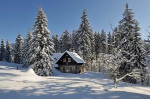 vakantie sneeuw